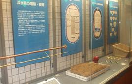 三面川・魚の宝庫